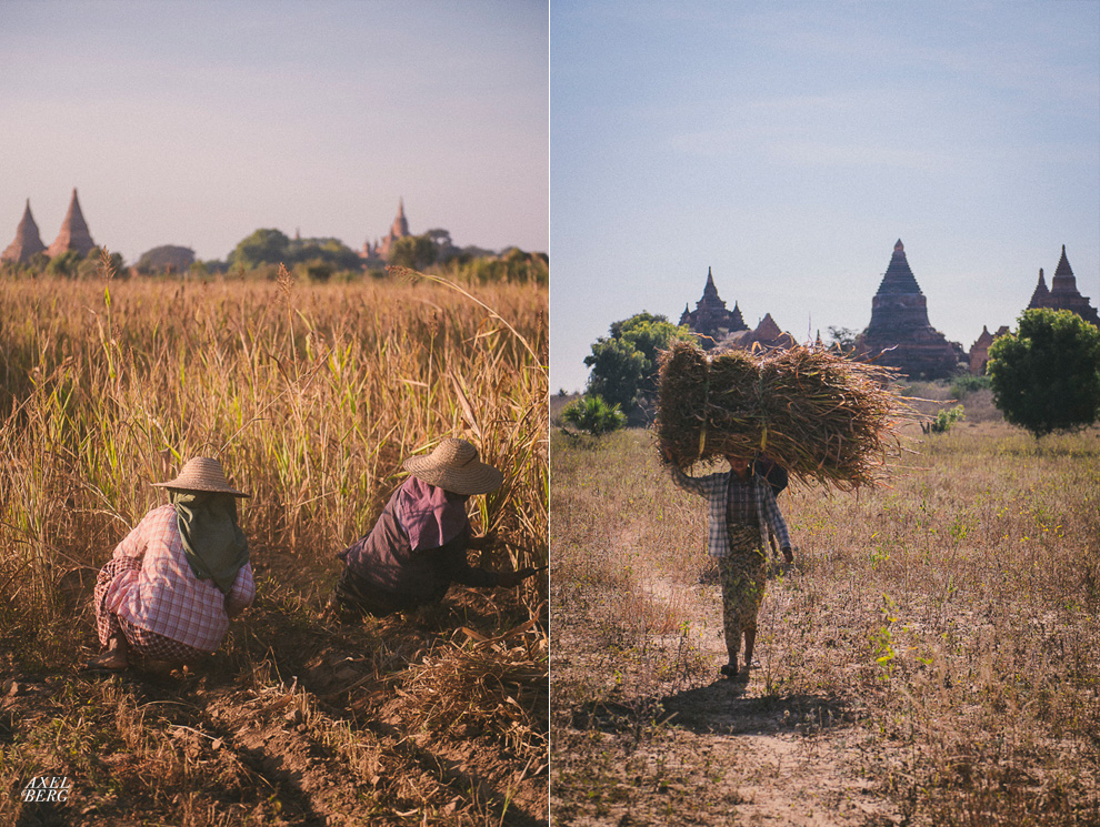 bagan-sunset8