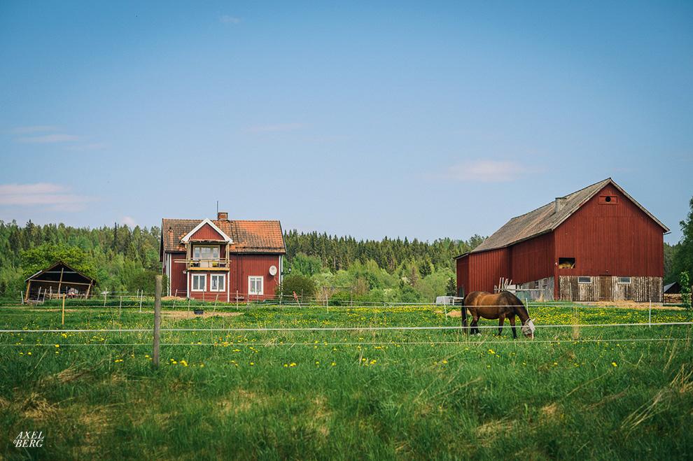 Swedish countryside summer, Indal, Sweden