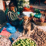 Nepal_Axel_and_Berg_Photography-1727