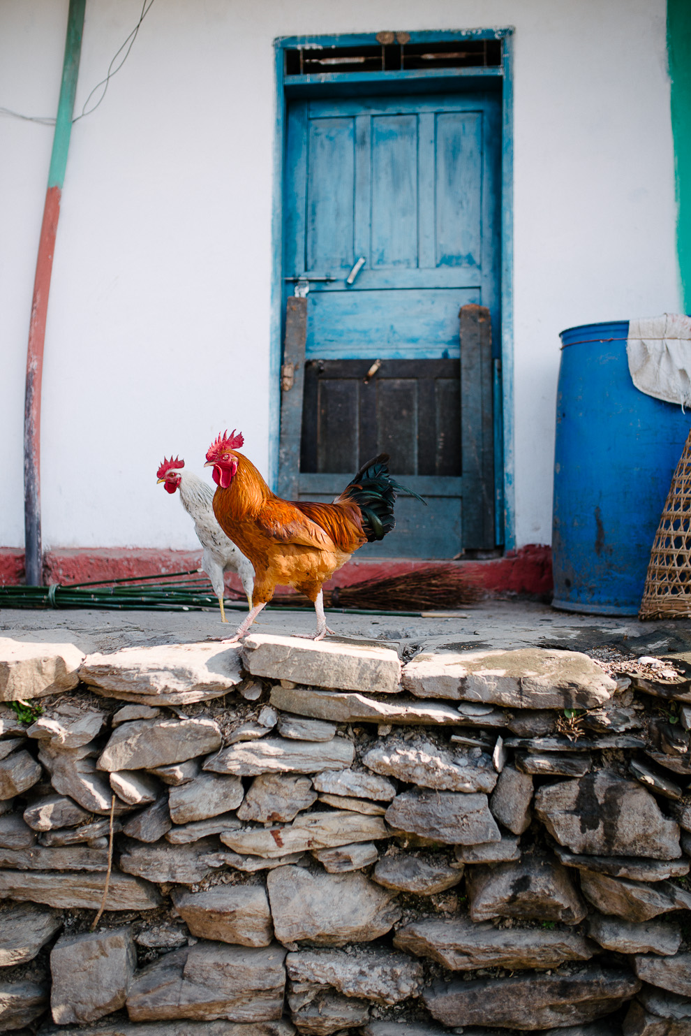 Nepal_Axel_and_Berg_Photography-2287