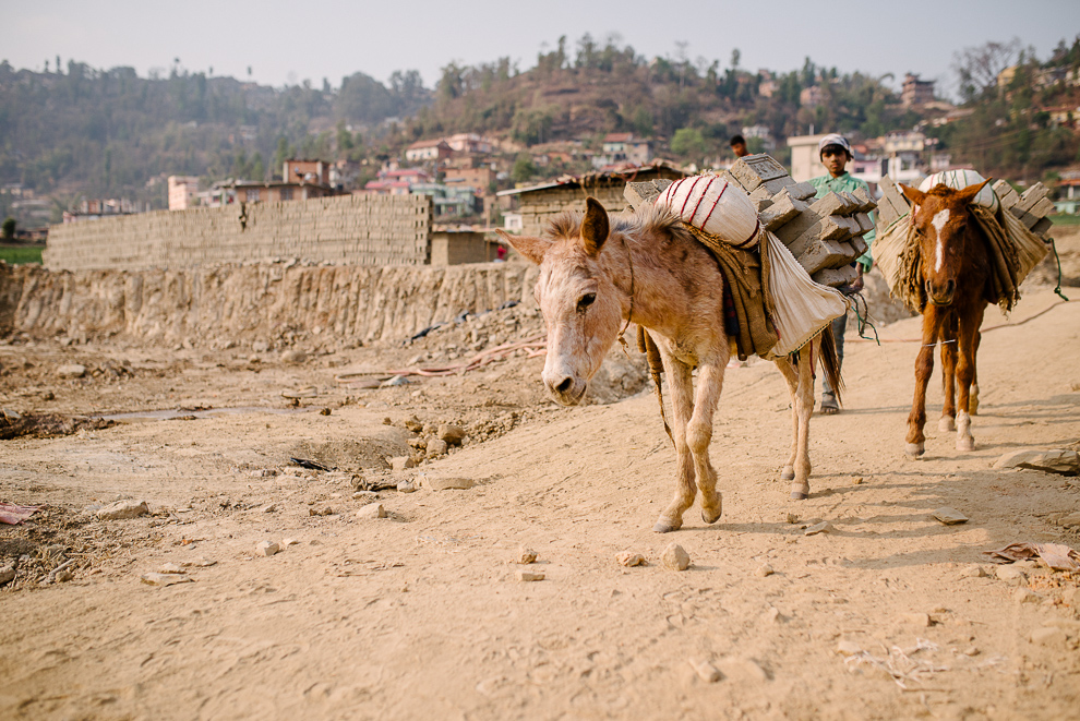 Nepal_Axel_and_Berg_Photography-2326