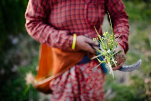 Nepal_Axel_and_Berg_Photography-2395